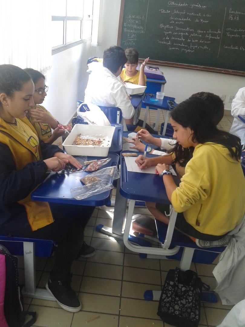 Confira imagens da aula prática realizada com os alunos do 7° ano.