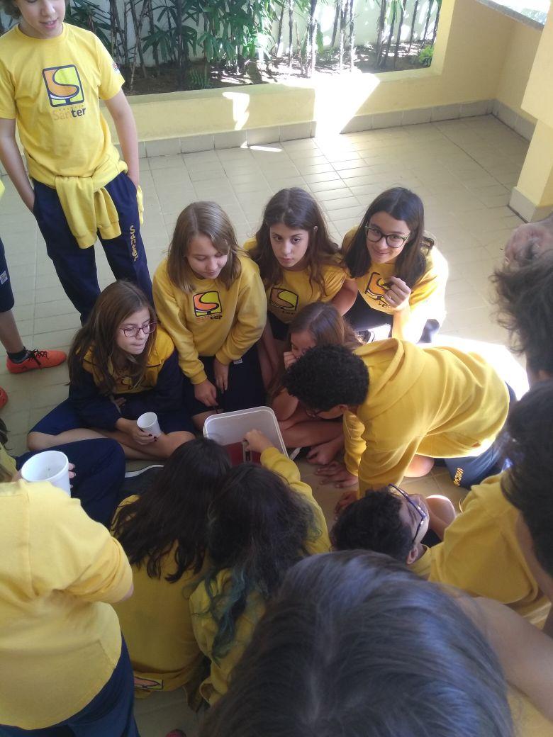 Confira as primeiras etapas do Projeto Veggie desenvolvido pelos alunos do 7° ano com a equipe do Engilab.